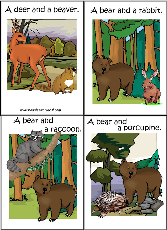 flashcards  forest animals for esl