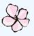 Cherry Blossom Falling