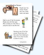the five senses worksheets. Black Bedroom Furniture Sets. Home Design Ideas