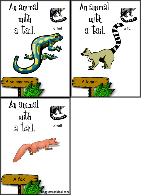 Animals And Their Food List