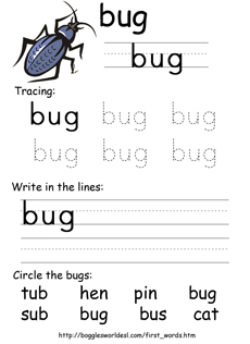 Sample CVC spelling worksheet: Bug